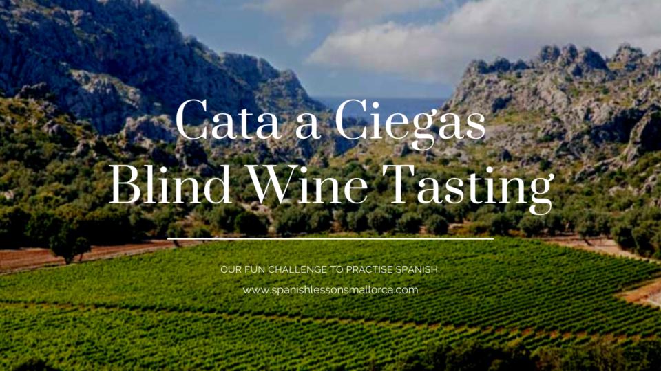 Cata a Ciegas Blind Wine Tasting Mallorca