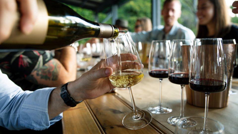 Cata vinos
